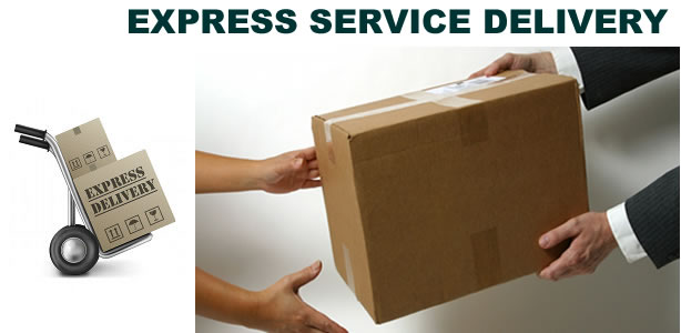 express-service-delivery